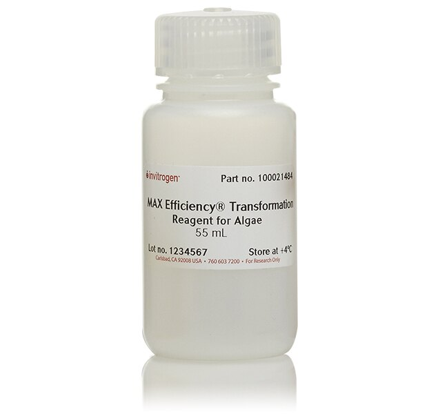 MAX Efficiency® Transformation Reagent for Algae
