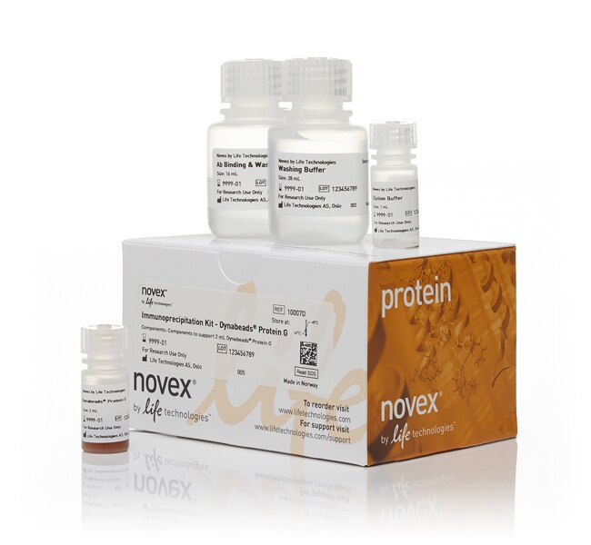 Dynabeads® Protein G Immunoprecipitation Kit