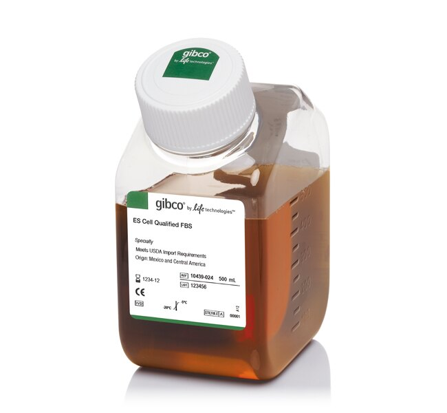 Fetal Bovine Serum, embryonic stem cell-qualified, USDA-approved regions