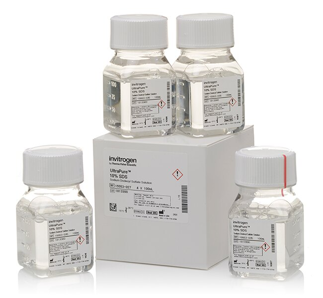 UltraPure™ SDS Solution, 10%