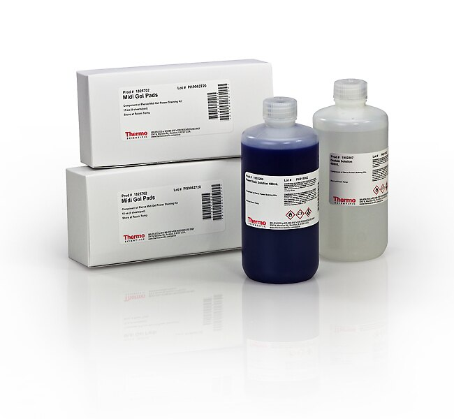 Pierce™ Midi Gel Power Staining Kit