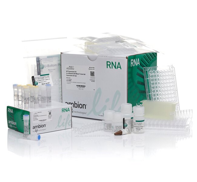 Ambion® WT Expression Kit
