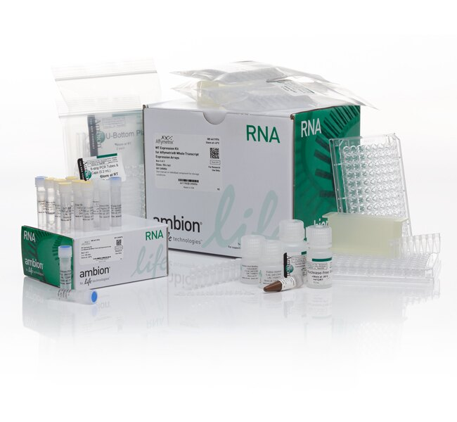 Ambion® WT Expression Kit, high throughput