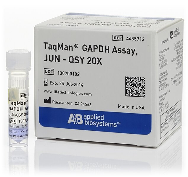 TaqMan® GAPDH Assay, JUN® dye/QSY® probe