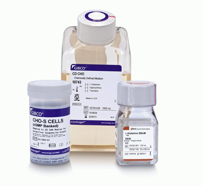 CHO-S Cells (cGMP banked) and Media Kit