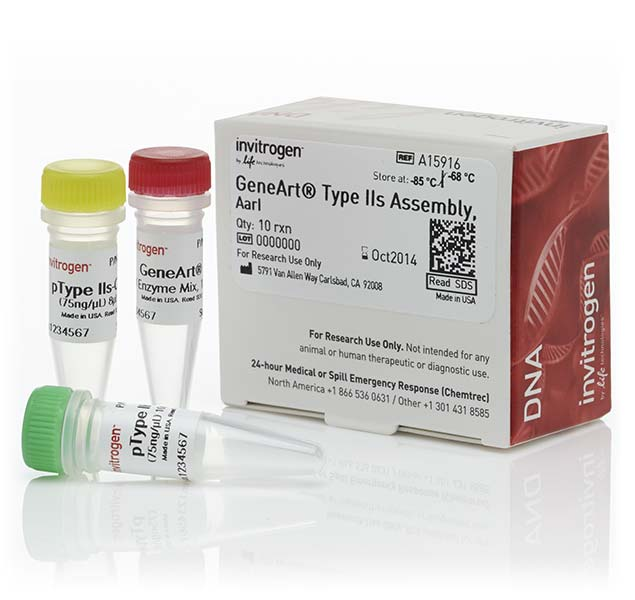 GeneArt&reg; Type IIs Assembly Kit, <i>Aar</i> I