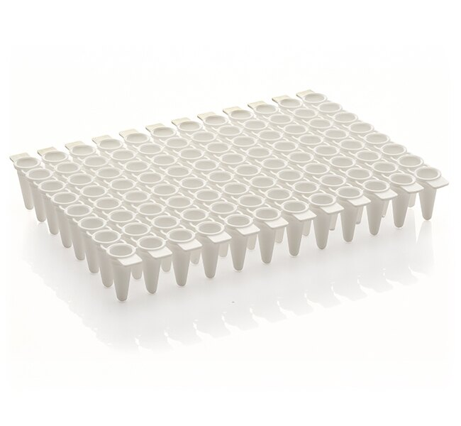 VersiPlate PCR Strip Tube Plate, 96-well, low profile