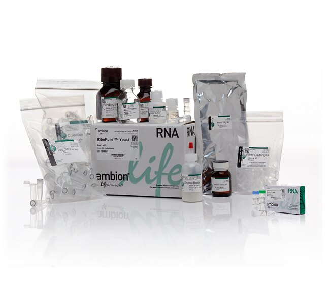 RiboPure™ RNA Purification Kit, yeast