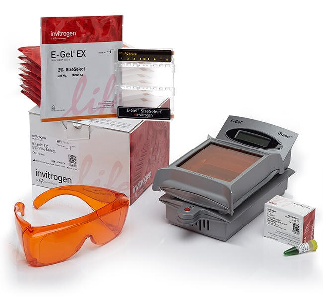 E-Gel® SizeSelect™ Agarose Gels Starter Kit, 2%