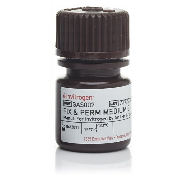 Permeabilization Medium (Medium B)