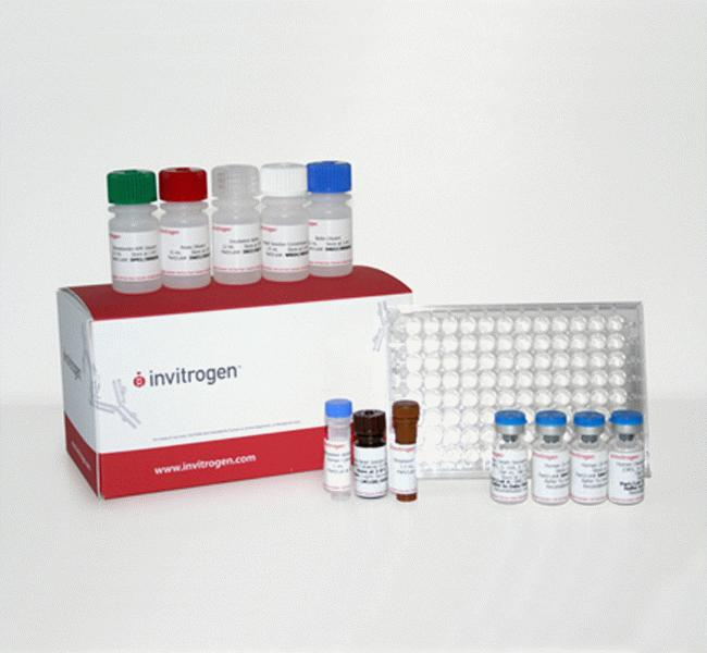 Multispecies Growth Factor Buffer Reagent Kit