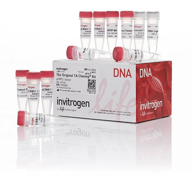 TA Cloning® Kit, with pCR™2.1 Vector, without competent cells