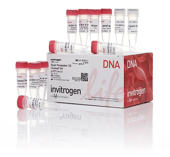 TA Cloning® Kit, Dual Promoter, with pCR™II Vector, without competent cells