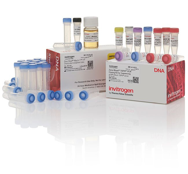 Zero Blunt&reg; TOPO&reg; PCR Cloning Kit for Sequencing, with One Shot&reg; Mach1&trade; T1 Phage-Resistant Chemically Competent <i>E. coli</i>