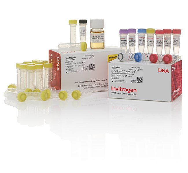 Zero Blunt&reg; TOPO&reg; PCR Cloning Kit for Sequencing, with One Shot&reg; MAX Efficiency&trade; DH5&alpha;-T1<sup>R</sup> <i>E. coli</i>