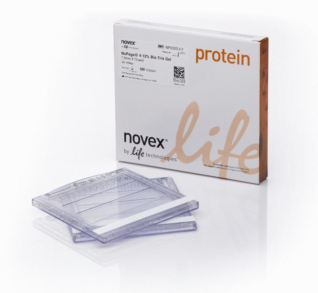 NuPAGE™ 4-12% Bis-Tris Protein Gels, 1.5 mm, 10-well