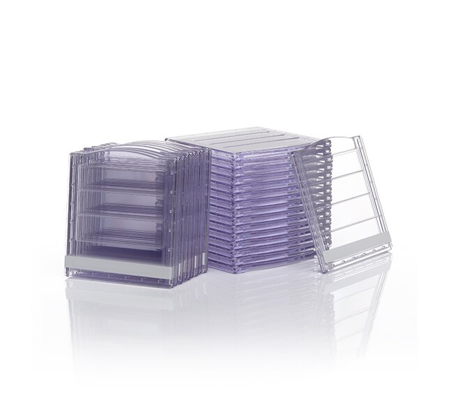 Empty Gel Cassettes, mini, 1.0 mm