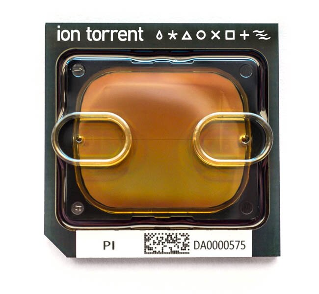 Ion PI™ Chip Kit v3