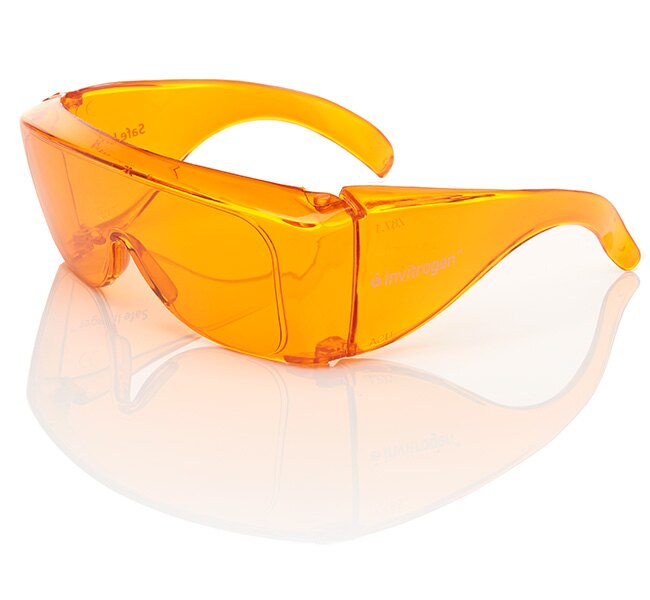 Safe Imager™ Viewing Glasses
