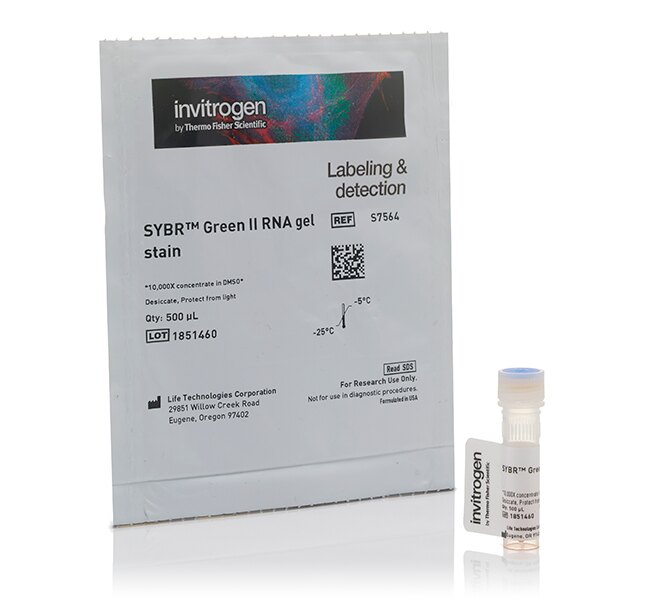 SYBR® Green II RNA Gel Stain, 10,000X concentrate in DMSO