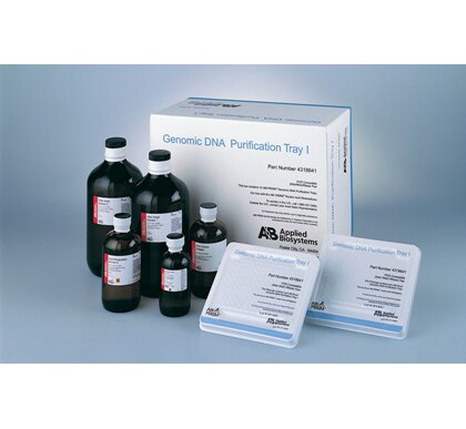 Wash Solution II, RNA Purification