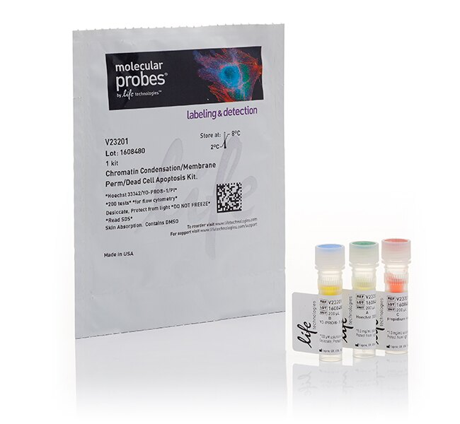 Chromatin Condensation & Membrane Permeability Dead Cell Apoptosis Kit with Hoechst 33342, YO-PRO®-1, and PI dyes, for flow cytometry