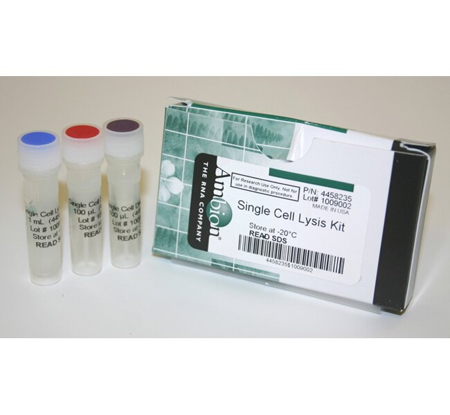 Single Cell Lysis Kit