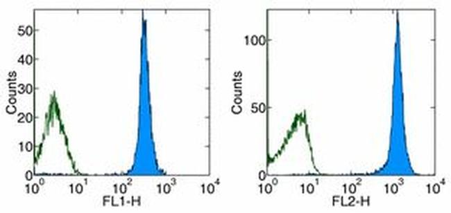 CD45.1 Antibody (12-0453-81) in Flow Cytometry