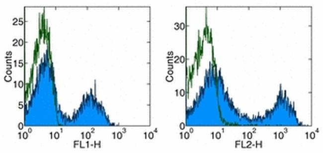 CD5 Antibody (17-0051-81) in Flow Cytometry