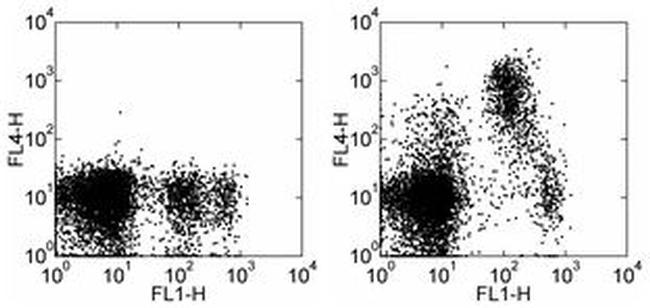 CD93 (AA4.1) Antibody (17-5892-81) in Flow Cytometry