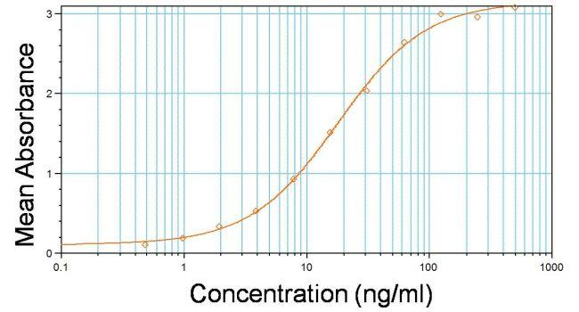 Rat IgG (H+L) Secondary Antibody (31470) in ELISA