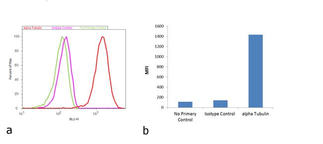 Mouse IgG Fc Secondary Antibody (31547) in Flow Cytometry