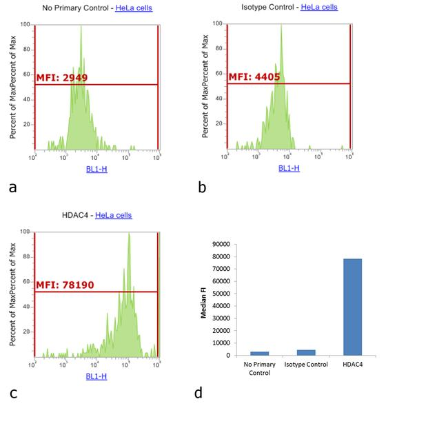 Rabbit IgG (H+L) Cross-Adsorbed Secondary Antibody (31584) in Flow Cytometry
