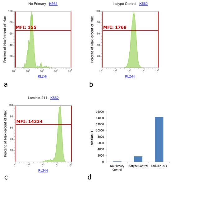 Rabbit IgG (H+L) Cross-Adsorbed Secondary Antibody (31984) in Flow Cytometry