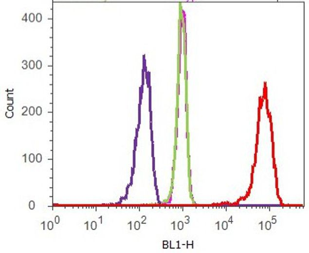 delta Catenin Antibody (33-9600) in Flow Cytometry