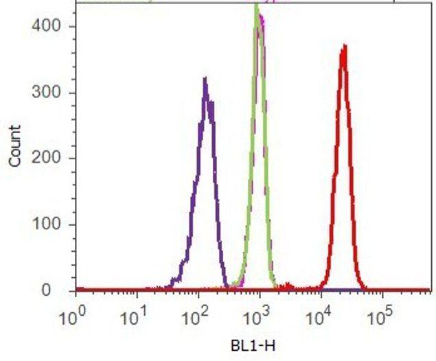 delta Catenin Antibody (33-9700) in Flow Cytometry