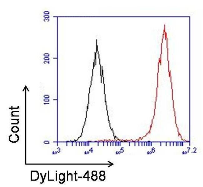 Rabbit IgG (H+L) Secondary Antibody (35552) in Flow Cytometry