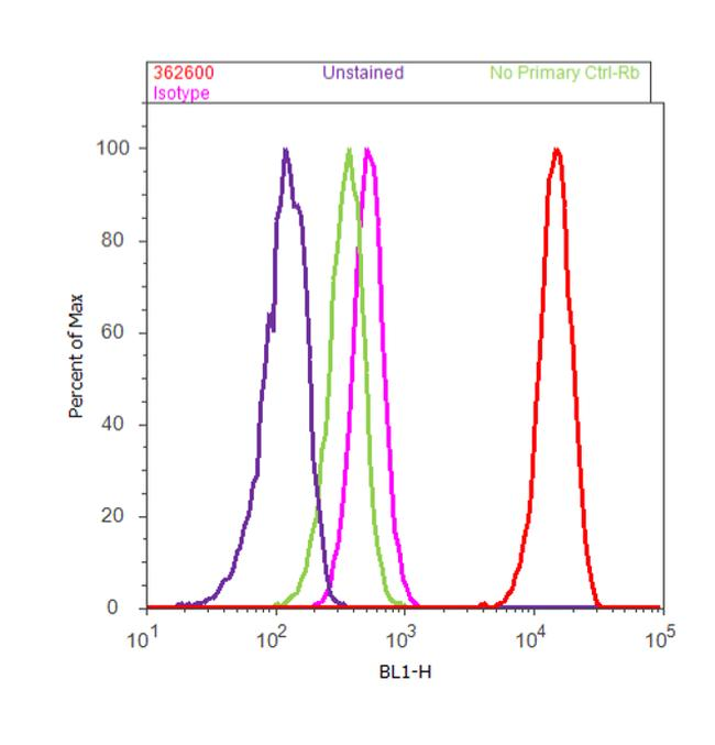 GRP94 Antibody (36-2600) in Flow Cytometry