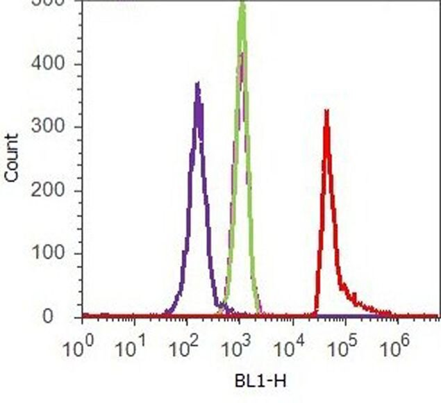 6x-His Tag Antibody (37-2900) in Flow Cytometry