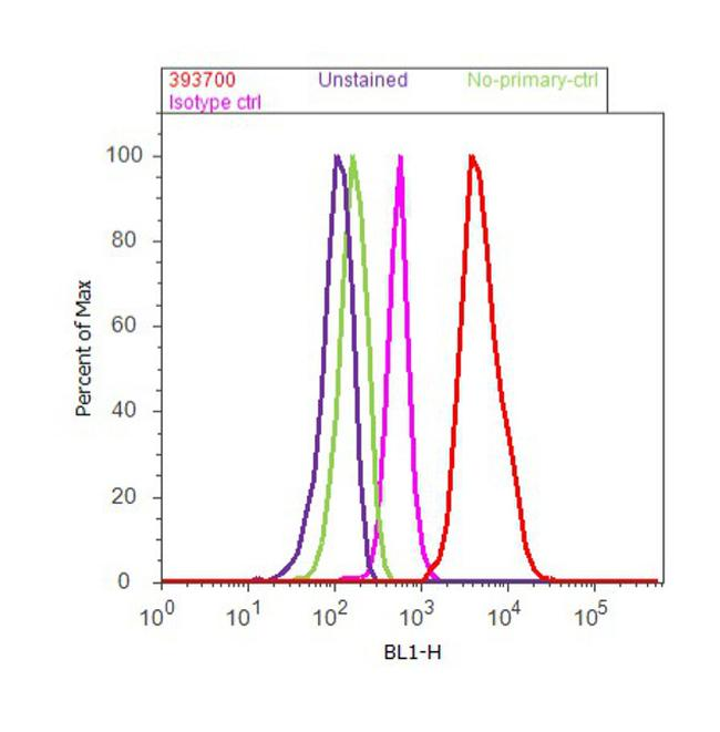 NQO1 Antibody (39-3700) in Flow Cytometry