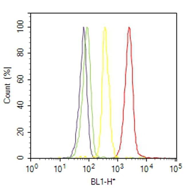 IkB alpha Antibody (39-7700) in Flow Cytometry