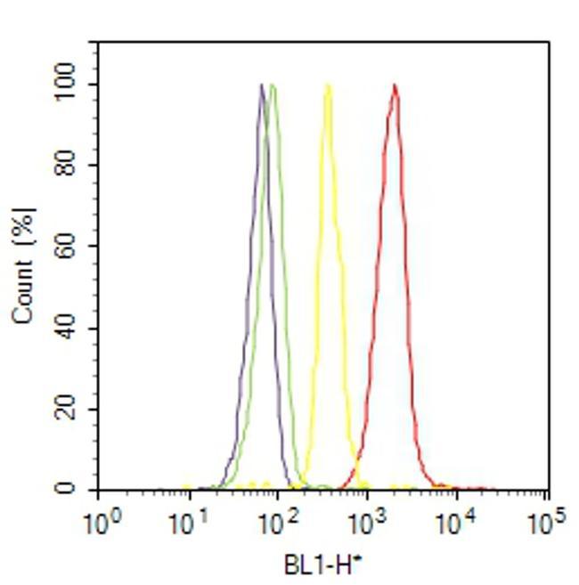 alpha Actinin 4 Antibody (42-1400) in Flow Cytometry