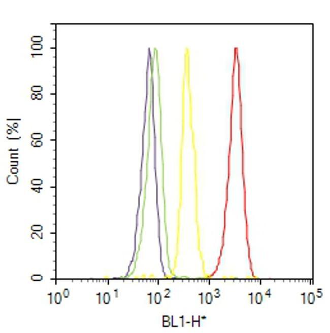 Phospho-VEGF Receptor 2 (Tyr1214) Antibody (44-1052) in Flow Cytometry