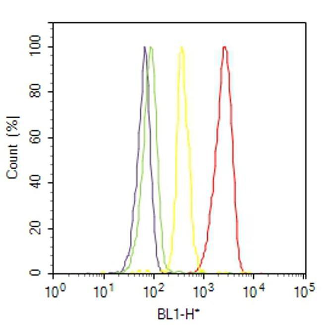 Phospho-GYS1 (Ser641, Ser645) Antibody (44-1092G) in Flow Cytometry