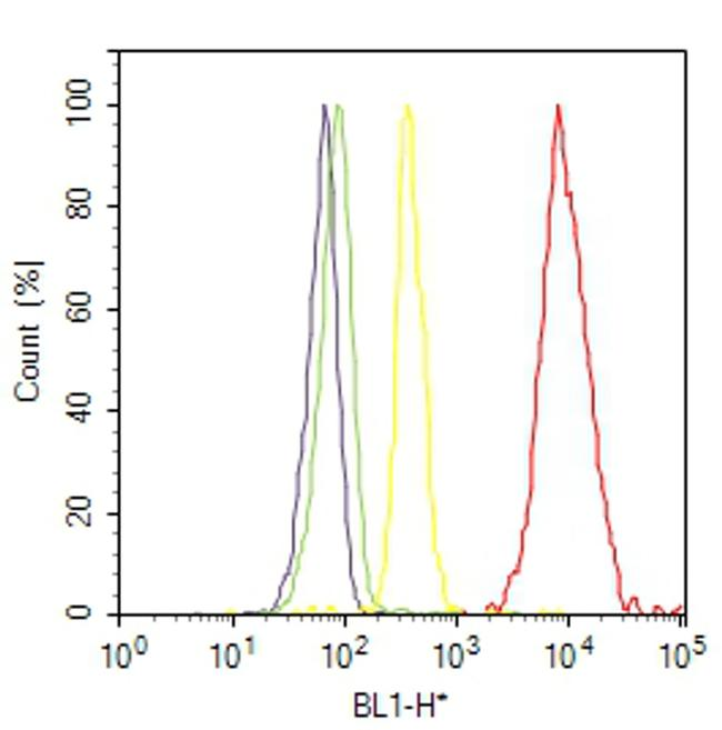 Phospho-beta Catenin (Ser45) Antibody (44-208G) in Flow Cytometry