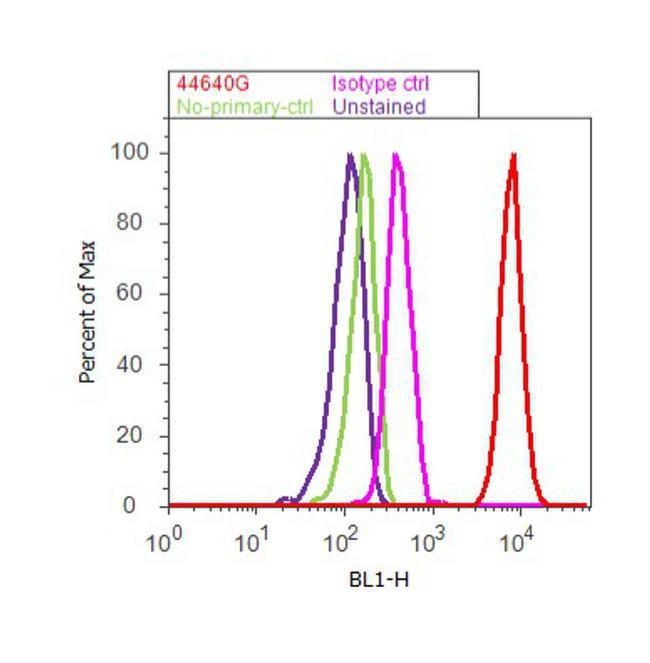 Phospho-p53 (Ser392) Antibody (44-640G) in Flow Cytometry