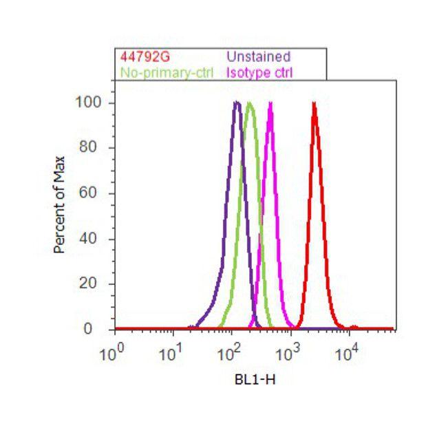 Phospho-EGFR (Tyr1148) Antibody (44-792G) in Flow Cytometry