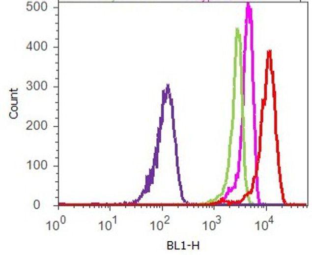 AIF Antibody (45-6200) in Flow Cytometry