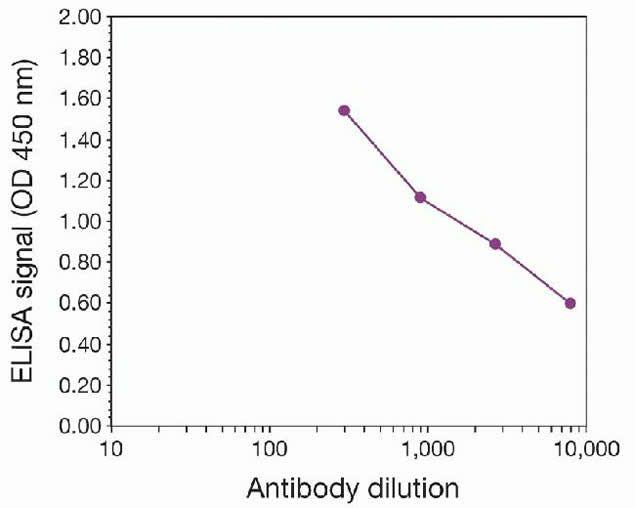 Di-Methyl-Histone H3 (Lys4) Antibody (49-1004) in peptide-ELISA