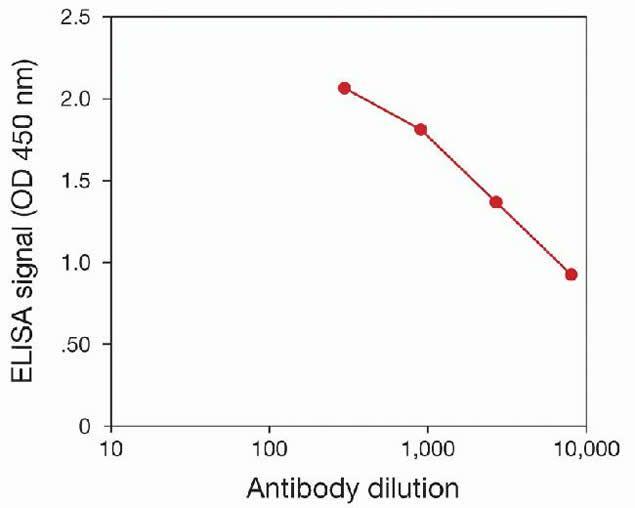 Methyl-Histone H4 (Lys20) Antibody (49-1023) in peptide-ELISA